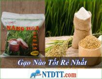 Gạo Nào Tốt Rẻ Nhất Hiện Nay ?