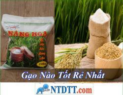 Gạo Nào Tốt Rẻ Nhất Hiện Nay 2020?